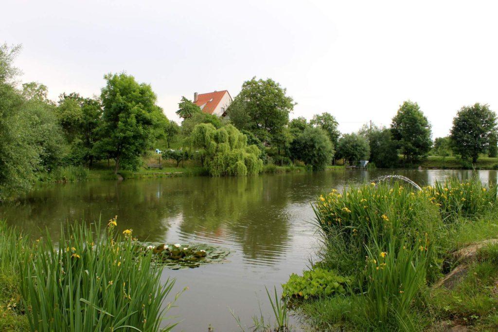 rybník ve voděradech