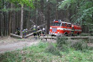 cvicny zasah hasicu 05